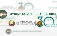Личный кабинет Nalog.gov.by: правила регистрации, оплата налогов онлайн