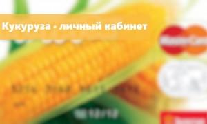 Кукуруза личный кабинет