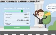 Как оформить займ через сервис Erubli: условия для клиентов, преимущества МФО