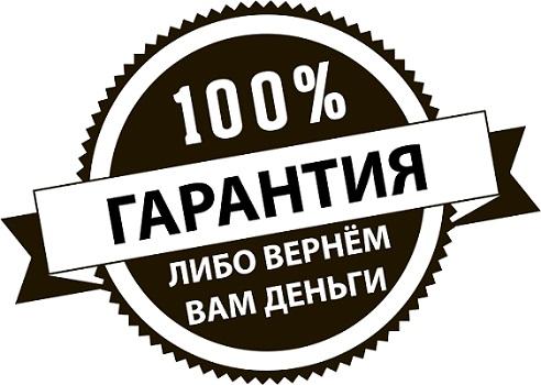 100% гарантия
