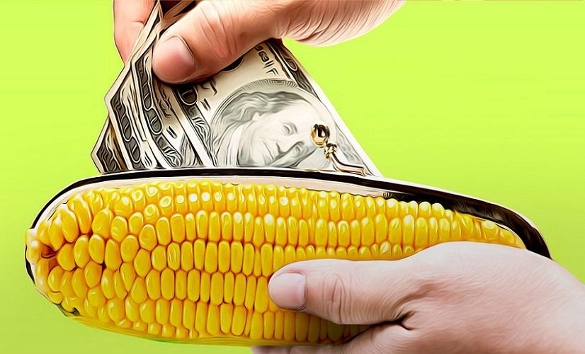 Деньги на карту Кукуруза