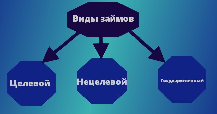 схема виды займов