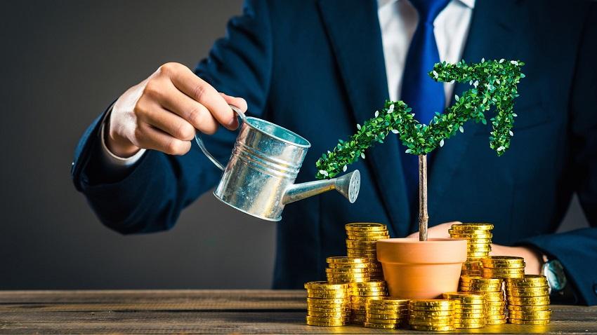 поливает денежное дерево