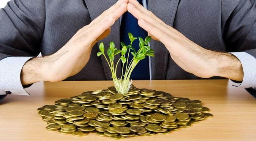 росток на деньгах