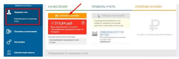 картинка скриншот мойгазсмородина