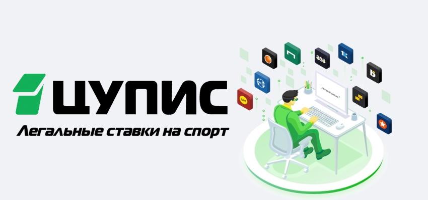 ЦУПИС лого