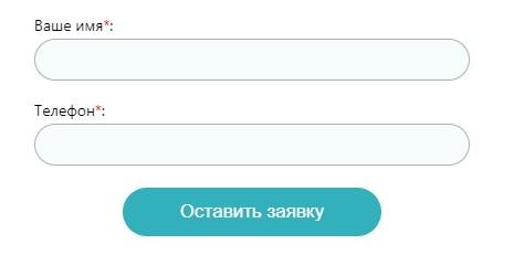 Vidnoe.NET заявка