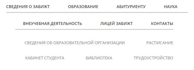 spo.zabizht.ru